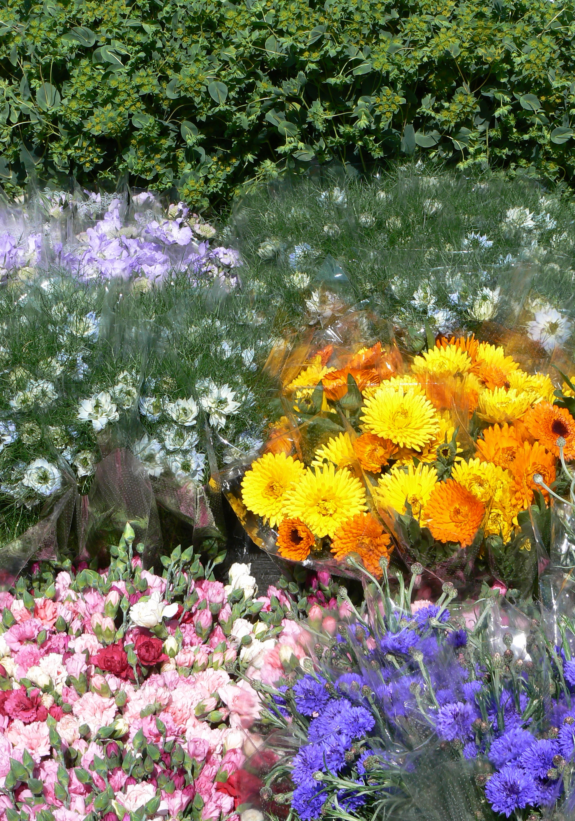 The Best Place To Buy British Flowers Bj Richards Flowers